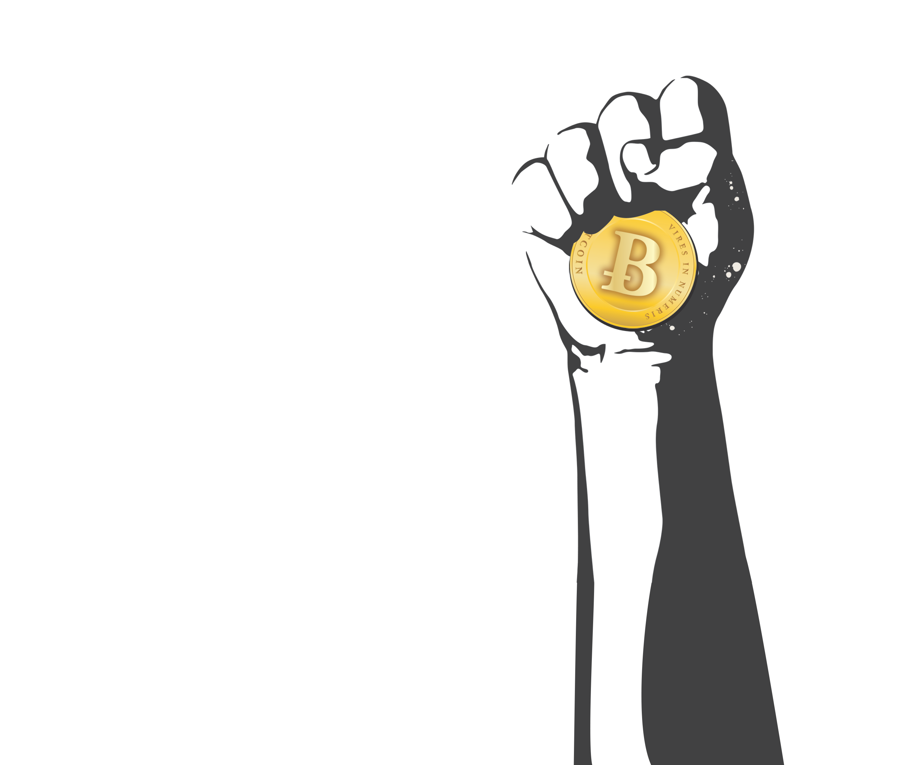 Image result for The Rise and Rise of Bitcoin